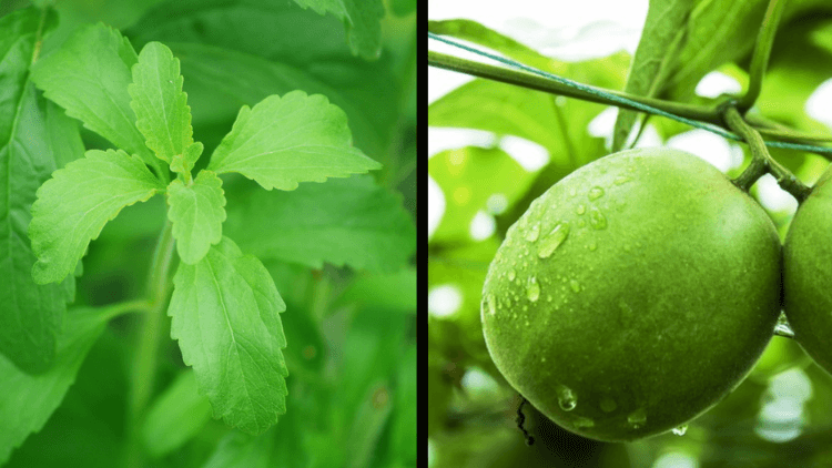Stevia vs. Monk Fruit: What to Choose?